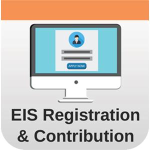 Eis Employment Insurance Scheme By Acronymsandslang Com